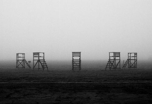 tf-fog_I
